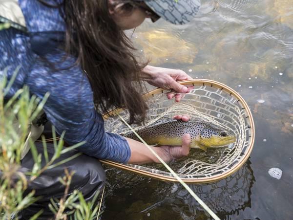 Fischteich pachten oder kaufen; Frau nimmt Fisch aus einem Käscher; Foto: Aurora Photos/fotolia.com