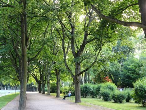 Köln, Lindenthal, Park, Foto: immowelt.de/Verena Kauzleben