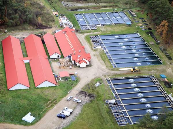 Fischteich pachten oder kaufen; Fischwirtschaftsanlage von oben; Foto: DariuszPa/iStock.com