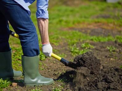 landwirtschaftliche Fläche kaufen, Bodenprobe, Foto: pressmaster/fotolia.com