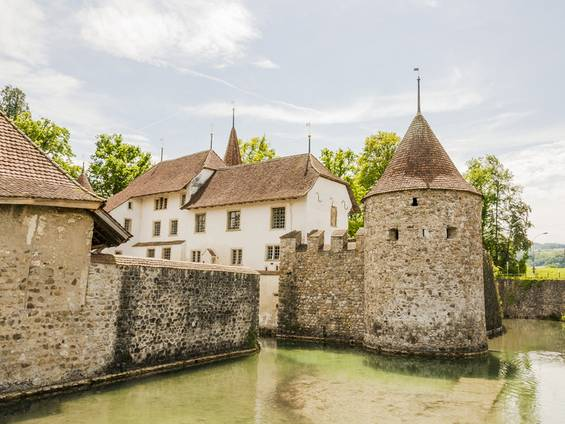 Schloss, Burg, Seengen, Schweiz, Foto: bill_17/fotolia.com