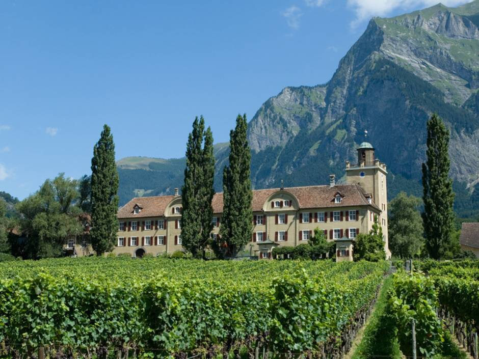 Schloss, Burg, Weingut, Weinbau, Salenegg, Graubünden, Foto: Udo Ingber/fotolia.com