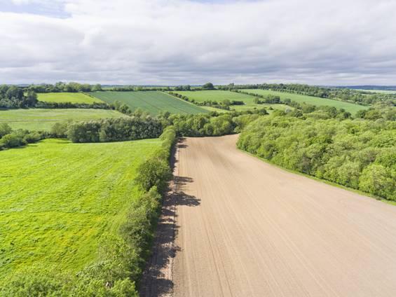landwirtschaftliche Fläche, Acker, Wiese, Grünland, Foto: iStock/Yola Watrucka
