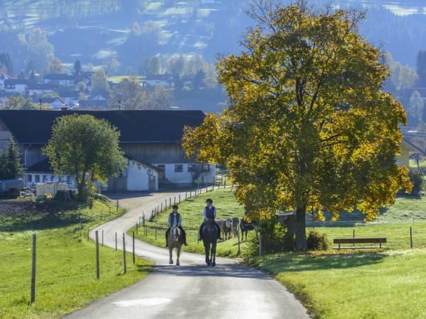 Reiterhof kaufen, Foto: ARochau/stock.adobe.com