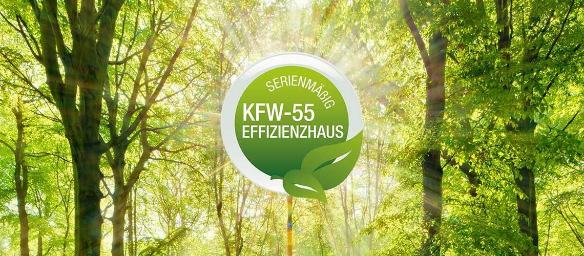 Kern-Haus – KfW55