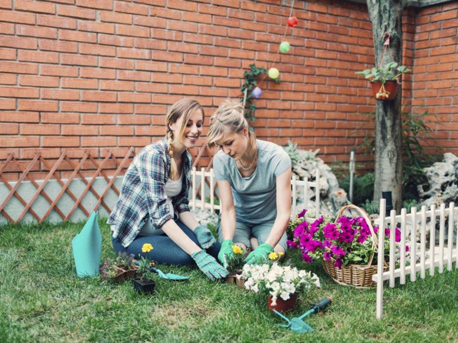 Streitfall Garten Was Mieter Durfen Und Was Nicht