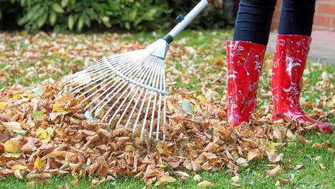 Hausordnung, Laub rechen, Foto: Kathrin39 / stock.adobe.com