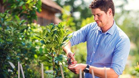 Hausordnung, Garten, Gemeinschaftsgarten, Foto: Halfpoint / adobe.stock.com