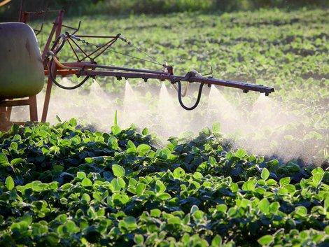 Landpacht, ordnungsgemäß bewirtschaften, Gyphosat, Verbot, Foto: iStock/ simazoran