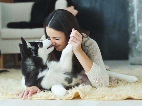 Eigentümer, Haustiere, Tierhaltung, Foto: nuzza11/fotolia.com