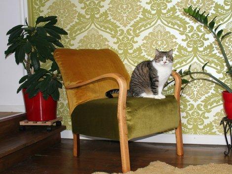 Alte Möbel aufpeppen, Sessel. Foto: Inna Scherer / immowelt.de