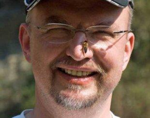 Bienennest, Klaus Maresch, Foto: bundesbienen.info