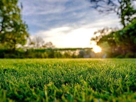 Kaufvertrag, Grundstück im Grünen mit untergehender Sonne im Gegenlicht, Foto: iStock / Nickbeer