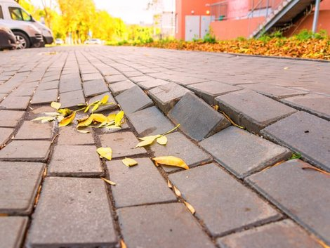 Zweitwohnsitzsteuer, Baumwurzel hebt Pflastersteine und zerstört den Gehweg, Foto: tramp51/stock.adobe.com