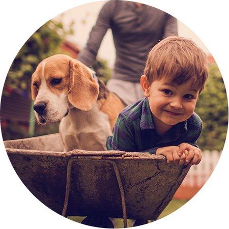 Bausparen, Bausparvertrag, ein Mann schiebt eine Schubkarre mit einem Kind und einem Hund, Foto: iStock.com/AleksandarNakic