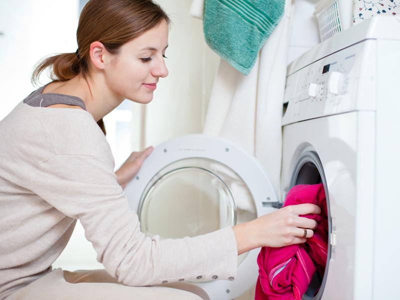 Kleidermotten Bekampfen Die Besten Tipps Und Hausmittel