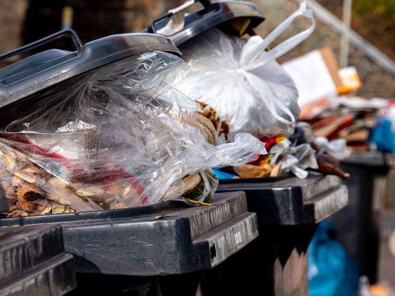 Mietminderung, Gestank, volle Mülltonnen, Foto: Animaflora PicsStock / stock.adobe.com